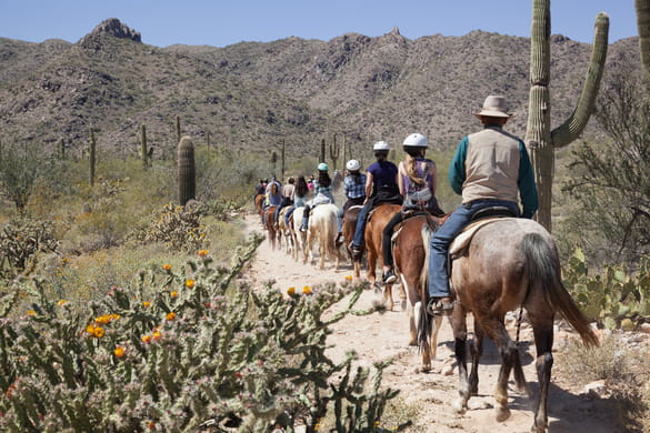 group on a horseback ride in arizona